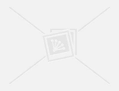 Секс на первых порах беременности